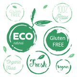 Healthy food icons, labels. Organic tags. Natural product elemen. Ts. Logo for vegetarian restaurant menu. Raster illustration. Low fat stamp. Eco product Stock Image