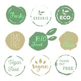 Healthy food icons, labels. Organic tags. Natural product elemen. Ts. Logo for vegetarian restaurant menu. Raster illustration. Low fat stamp. Eco product Royalty Free Stock Photography