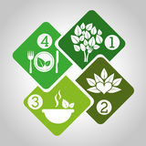 Healthy food infographics Royalty Free Stock Images