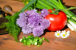 Healthy food ingredients Stock Images