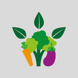 Healthy food organic product isolated icon design Royalty Free Stock Image