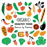 Healthy food, organic products set. Funny doodle hand drawn vector illustration. Farm market cute food collection. royalty free illustration