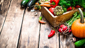 Healthy food. Organic vegetables in an old box. Royalty Free Stock Photos