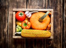 Healthy food. Organic vegetables in an old box. Stock Image