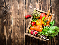 Healthy food. Organic vegetables in an old box. Stock Photos