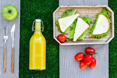 Healthy food for picnic. Sanwiches, fruits, vegetables, juice on tablecloth on green grass background top view Stock Photos