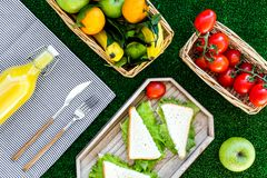 Healthy food for picnic. Sanwiches, fruits, vegetables, juice on tablecloth on green grass background top view Stock Images