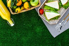 Healthy food for picnic. Sanwiches, fruits, vegetables, juice on tablecloth on green grass background top view copyspace Royalty Free Stock Photography
