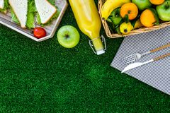 Healthy food for picnic. Sanwiches, fruits, vegetables, juice on tablecloth on green grass background top view copyspace Royalty Free Stock Photo