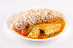 Healthy food plate, fish and rice, Royalty Free Stock Images
