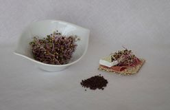 The raw purple cabbage sprouts with ham stock image