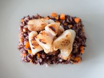 Diet food of riceberry with carrots and fish. Royalty Free Stock Photo