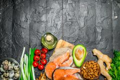 Healthy food. Salmon with organic food royalty free stock images