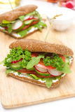 Healthy food - sandwich with cottage cheese, greens, vegetables Royalty Free Stock Images