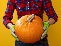 Closeup on woman farmer on yellow background showing pumpkin Royalty Free Stock Photos