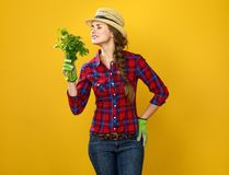 Woman farmer on yellow background enjoying fresh parsley Stock Image