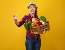 Smiling woman grower with box of fresh vegetables beckoning. Healthy food to your table. Portrait of smiling young woman grower in checkered shirt  on yellow Royalty Free Stock Photo