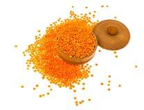 Healthy food-useful legumes Stock Image