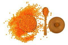 Healthy food-useful legumes Royalty Free Stock Images