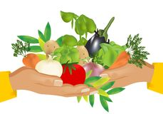 Free Healthy Food (vegetables), Cdr Vector Royalty Free Stock Photos - 20138318