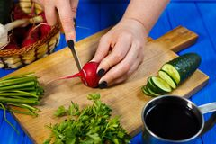 Woman hands cutting fresh crunchy radish on cutting board with c. Healthy food, vegetarian, home cooking, vegetable slices. Woman hands cutting fresh crunchy Stock Image
