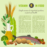 Healthy Food Vitamin E Banner. Vitamin E food sources. Healthy eating graphic concept with vector illustrations and copyspace. Useful for health magazines royalty free stock photo