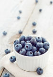Healthy forest fruit blueberry Royalty Free Stock Photo