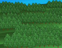 Healthy Forest Illustration Stock Photo