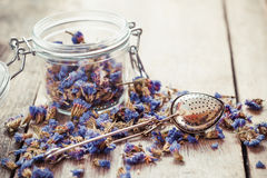 Healthy forget me not tea in glass jar and strainer Royalty Free Stock Image