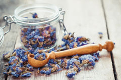 Healthy forget me not tea in glass jar and wooden spoon. Stock Photo