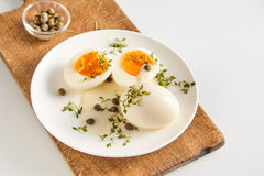 Healthy free range eggs in caper and mustard sauce Stock Image