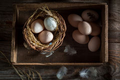 Healthy free range eggs from the henhouse Royalty Free Stock Image