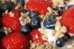 Healthy Fresh Berries with Granola. Granola with greek yogurt and berries, macro, horizontal Stock Images