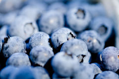 Healthy fresh blueberries macro closeup on market outdoor Royalty Free Stock Images