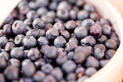Healthy fresh blueberries macro closeup on market outdoor Royalty Free Stock Image