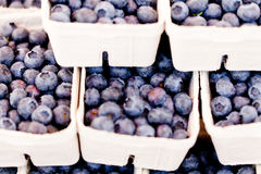 Healthy fresh blueberries macro closeup on market outdoor Stock Photos