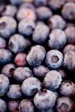 Healthy fresh blueberries macro closeup on market outdoor Royalty Free Stock Photos