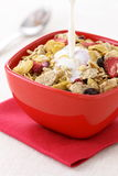Healthy fresh cereal Stock Image