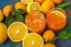 Healthy fresh citrus juice two glasses, oranges, tangerines, lemons, ice, leaves. Royalty Free Stock Images