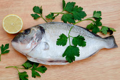 Healthy fresh fish on wooden board Stock Photography