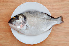 Healthy fresh fish on wooden board Royalty Free Stock Images