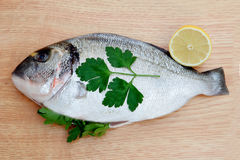 Healthy fresh fish on wooden board Stock Photo