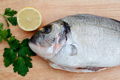 Healthy fresh fish on wooden board Stock Photos
