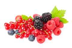 Healthy fresh food berries group. Macro shot of fresh raspberries, blueberries, blackberries, red currant and blackberry with leav. Es isolated on white stock images