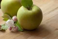 Healthy fresh green apple on wood. Grouped apples with leaf and blossom Royalty Free Stock Image