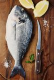 Healthy fresh raw fish on the wooden board. Top view and selective focus Stock Images