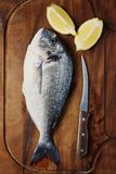 Healthy fresh raw fish on the wooden board. Top view and selective focus Stock Photo