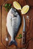 Healthy fresh raw fish on the wooden board. Top view and selective focus Stock Photos