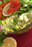 Healthy fresh salad Royalty Free Stock Photography