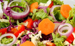 Healthy Fresh Salad Stock Images